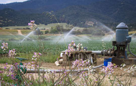 Groundwater pumping in California farmland